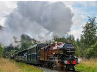 Cream Tea Steam and Sparkle Experience For Two at Ravenglass Railway