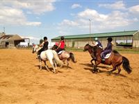 One Hour Horse Riding Experience - UK Wide Experience Day