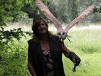 2 for 1 Woodland Walk and Owl Flying Experience at Lee Valley Park Experience Day
