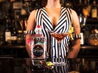 Gin Masterclass for Two at MAP Maison