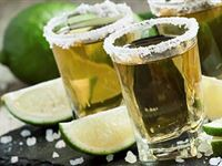 Tequila vs Mescal Tasting Experience